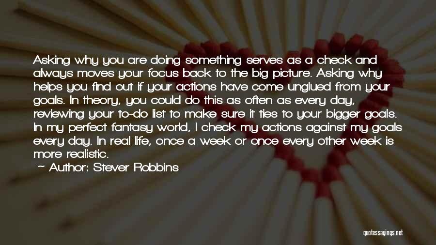 A Bigger Picture Quotes By Stever Robbins