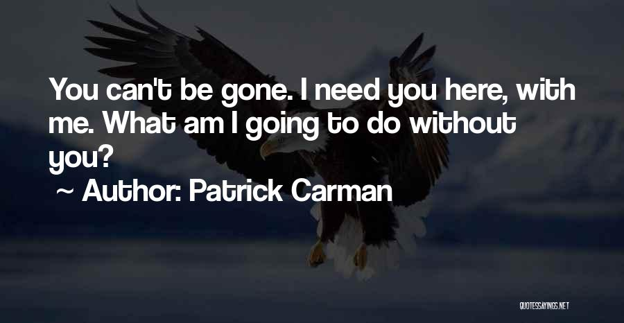 A Boy U Love Quotes By Patrick Carman