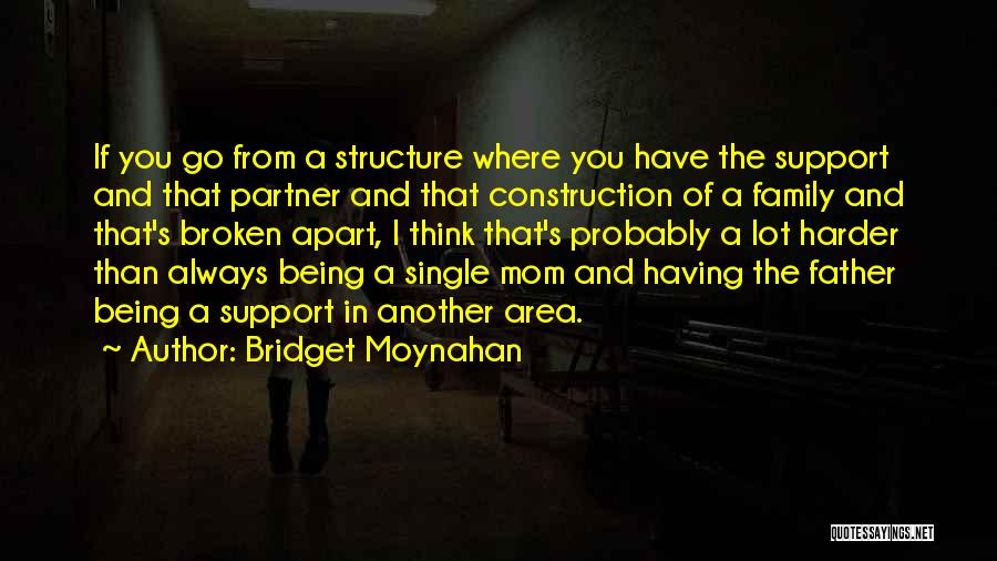 A Broken Family Quotes By Bridget Moynahan
