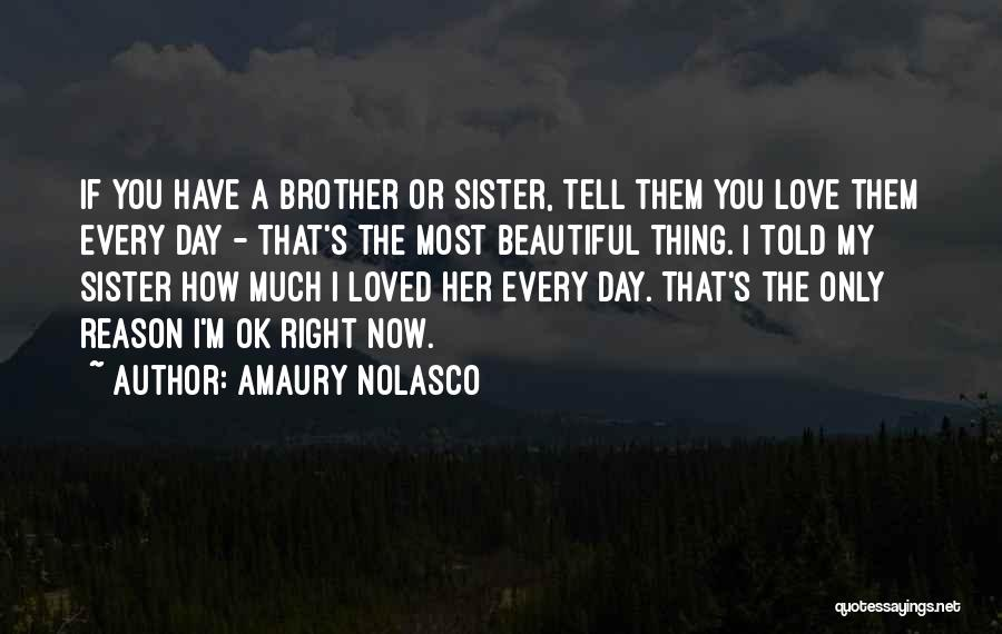 A Brother's Love For His Sister Quotes By Amaury Nolasco