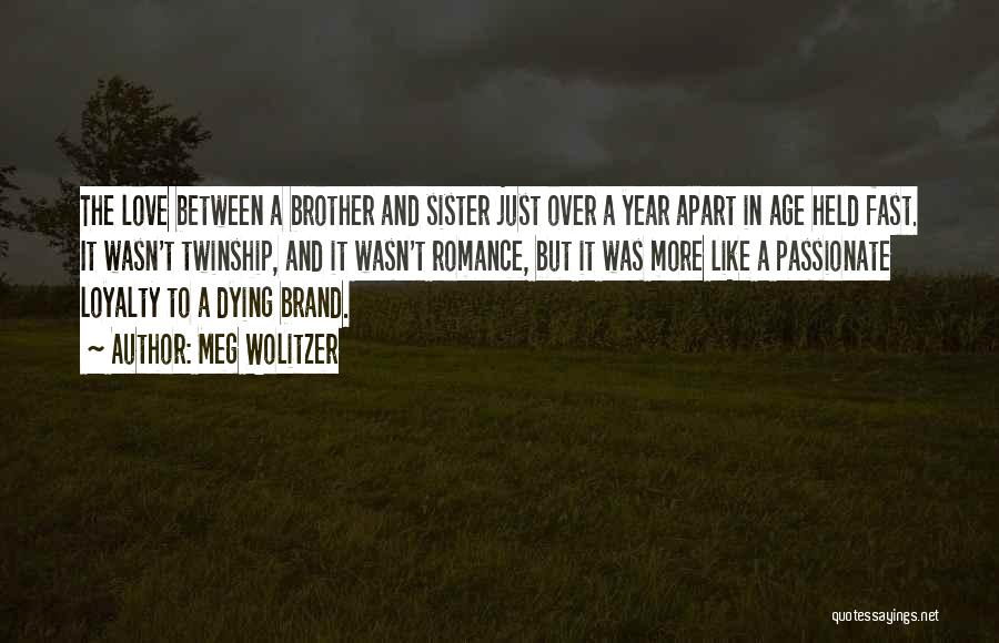A Brother's Love For His Sister Quotes By Meg Wolitzer