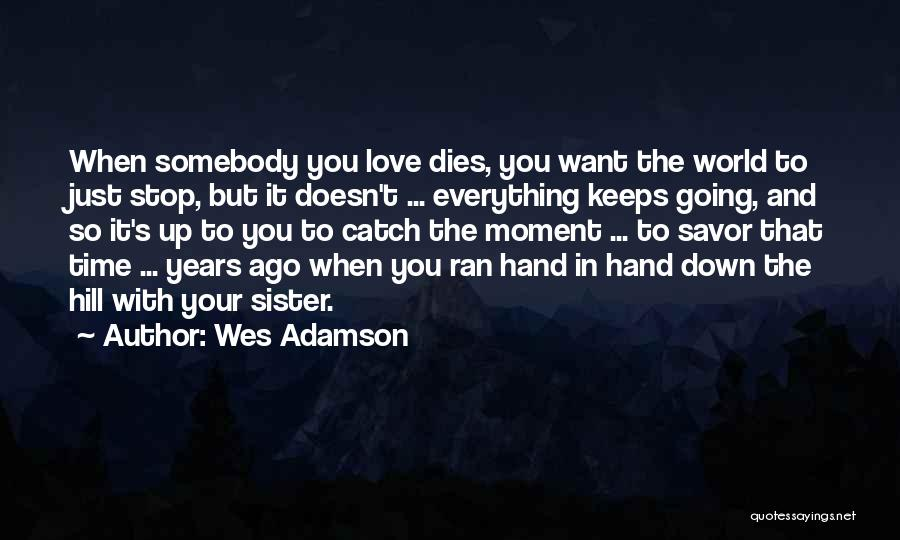 A Brother's Love For His Sister Quotes By Wes Adamson