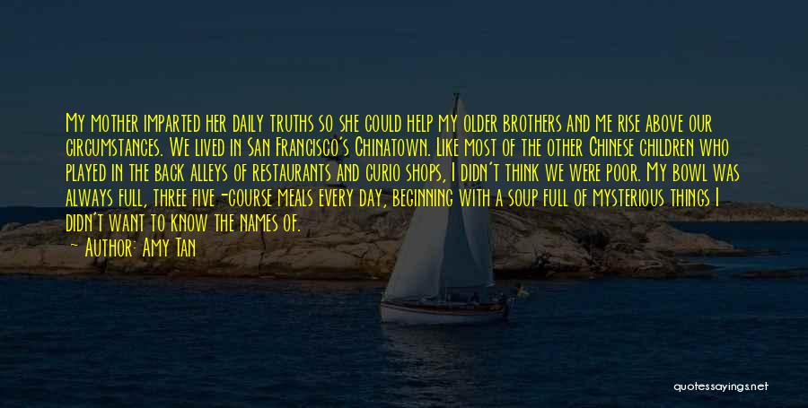 A Day With My Family Quotes By Amy Tan