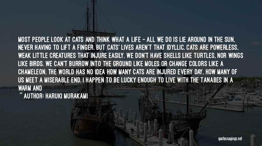 A Day With My Family Quotes By Haruki Murakami