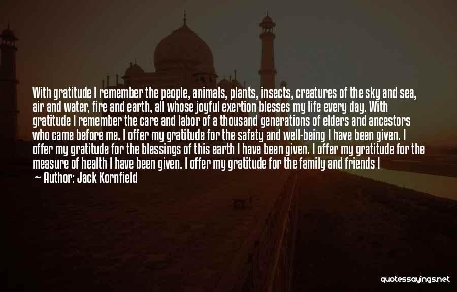 A Day With My Family Quotes By Jack Kornfield