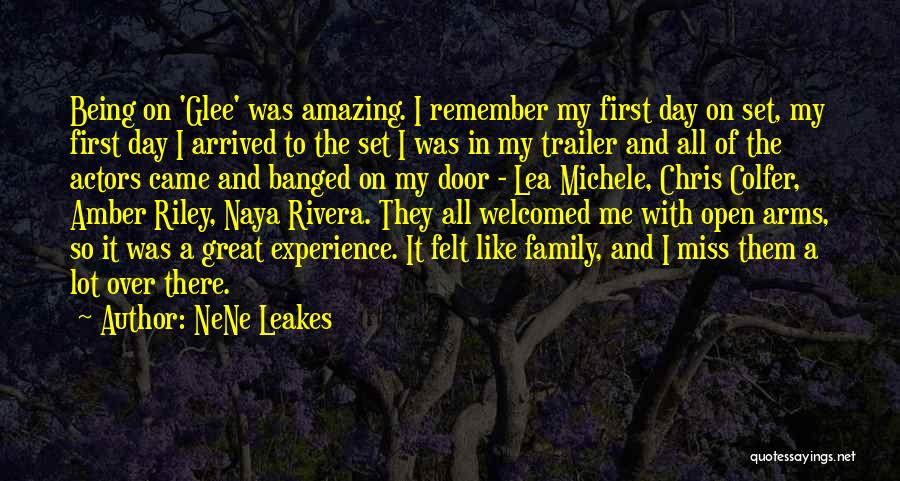 A Day With My Family Quotes By NeNe Leakes