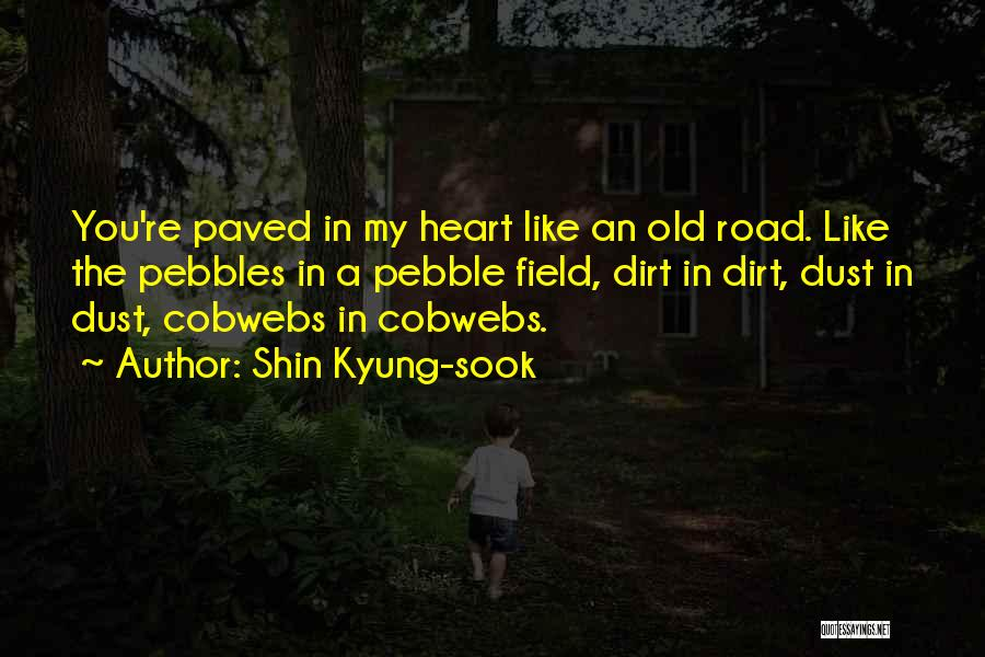 A Dirt Road Quotes By Shin Kyung-sook