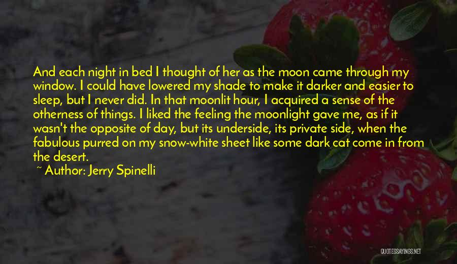 A Fabulous Day Quotes By Jerry Spinelli