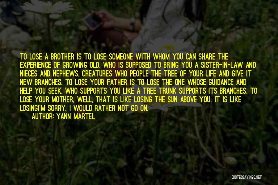 A Father's Guidance Quotes By Yann Martel