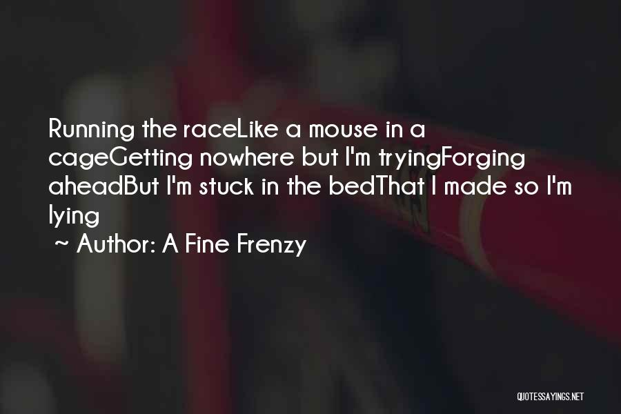 A Fine Frenzy Quotes 1610050