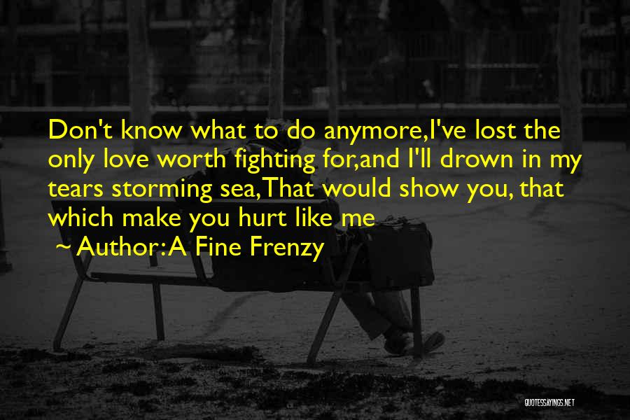 A Fine Frenzy Quotes 2007577