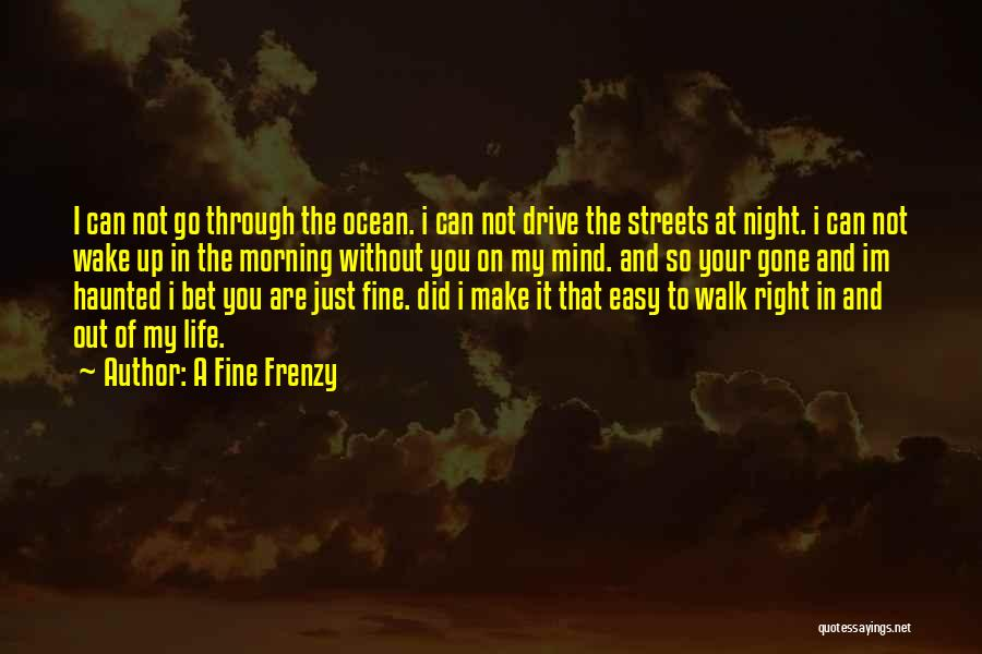A Fine Frenzy Quotes 884205