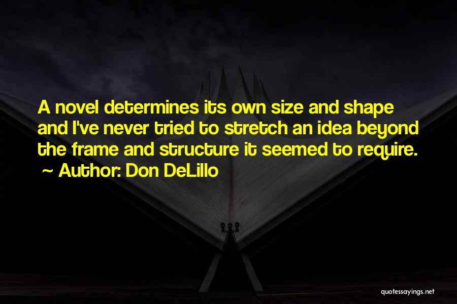 A Frame Quotes By Don DeLillo