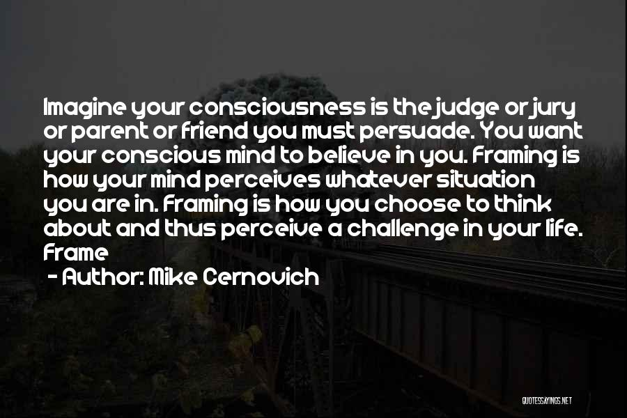 A Frame Quotes By Mike Cernovich