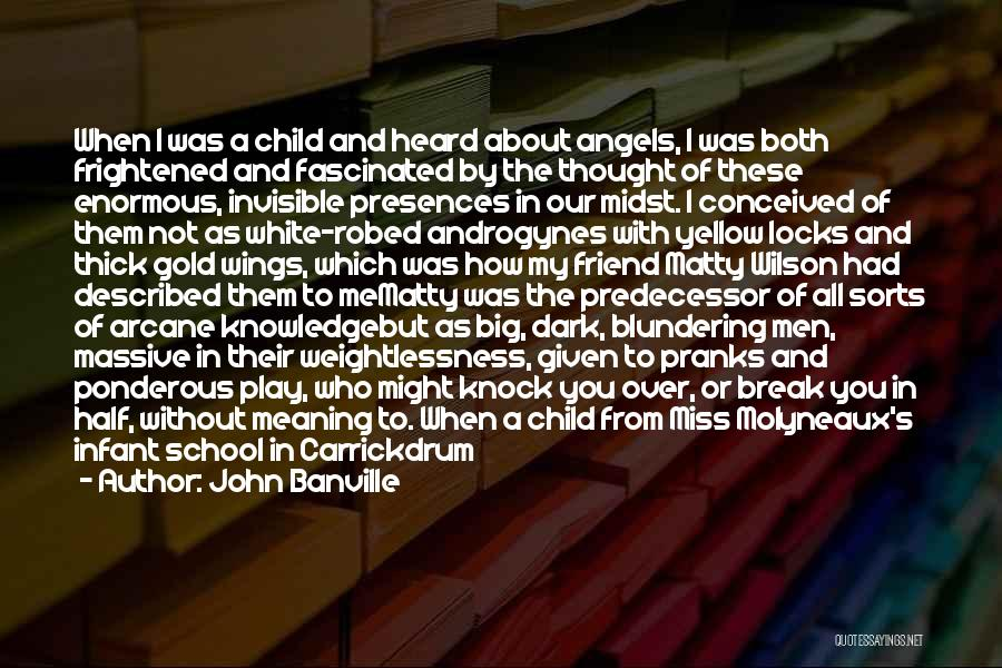 A Friend You Miss Quotes By John Banville