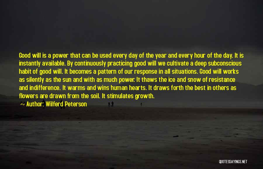 A Good Day Quotes By Wilferd Peterson