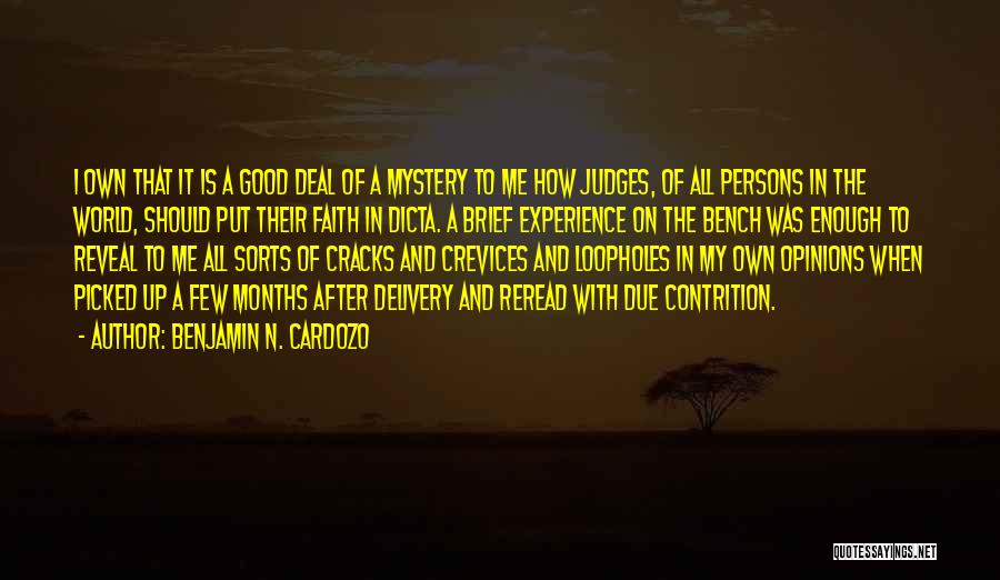A Good Experience Quotes By Benjamin N. Cardozo
