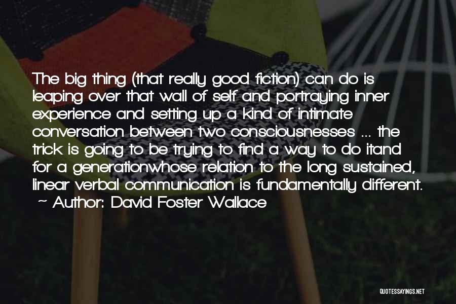 A Good Experience Quotes By David Foster Wallace