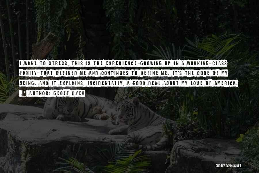 A Good Experience Quotes By Geoff Dyer