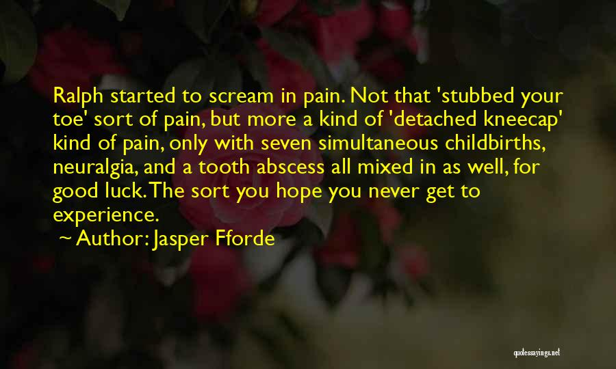 A Good Experience Quotes By Jasper Fforde