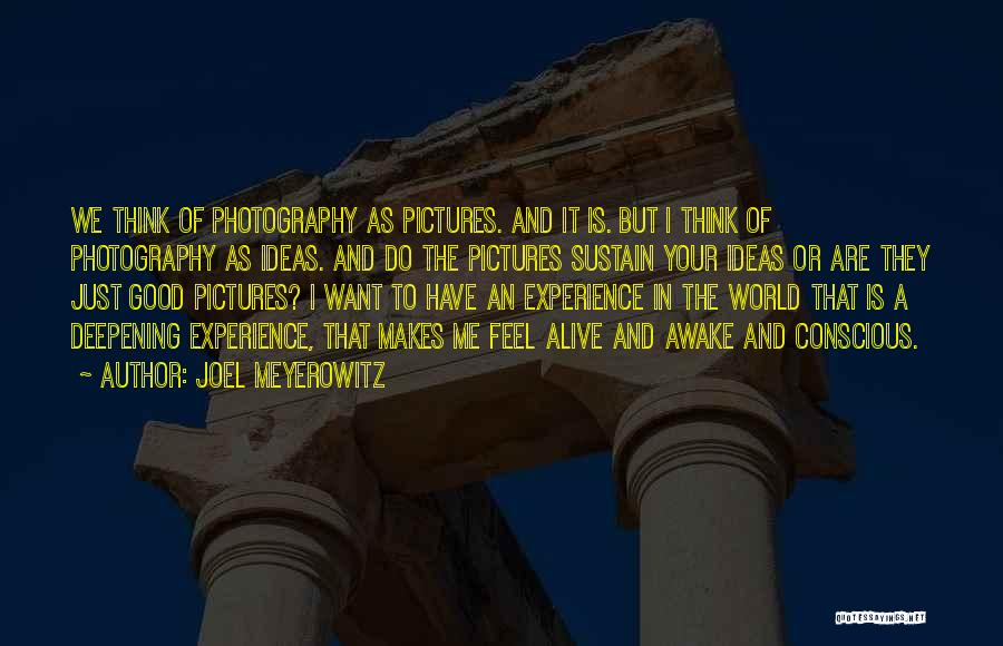 A Good Experience Quotes By Joel Meyerowitz