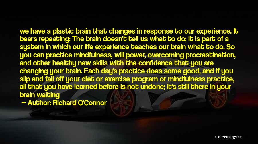 A Good Experience Quotes By Richard O'Connor