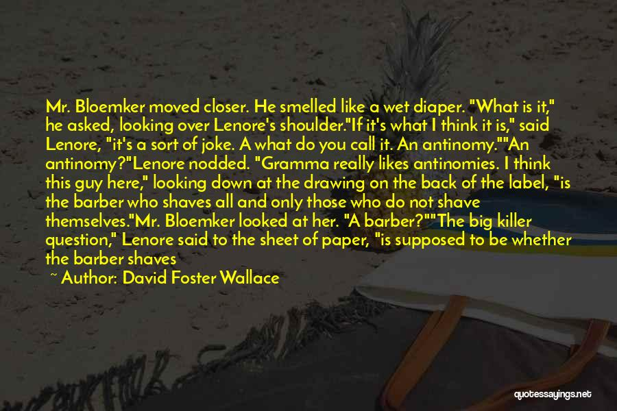 A Guy You Like Quotes By David Foster Wallace