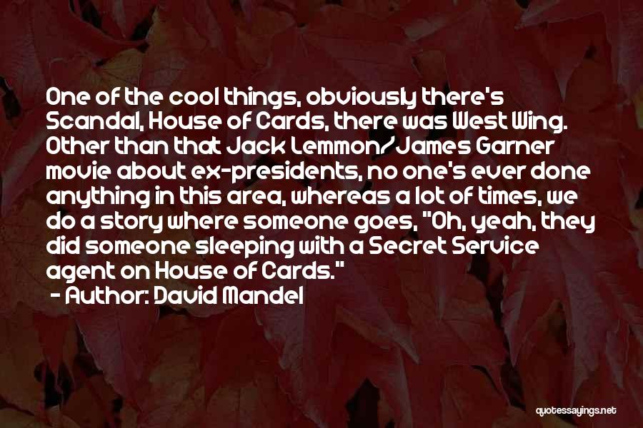 A House Of Cards Quotes By David Mandel