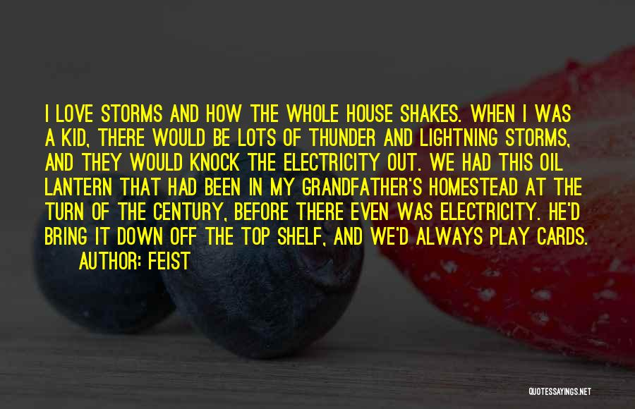 A House Of Cards Quotes By Feist