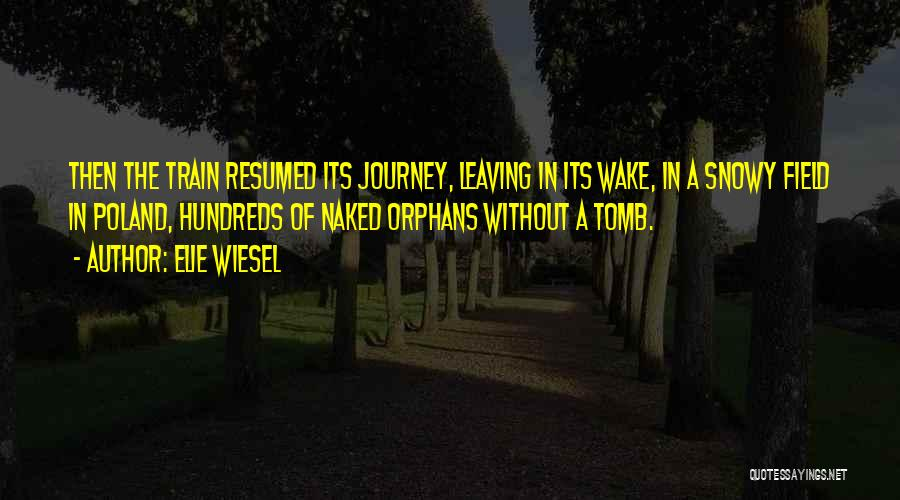 A Journey By Train Quotes By Elie Wiesel