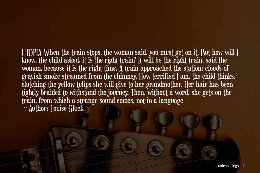 A Journey By Train Quotes By Louise Gluck