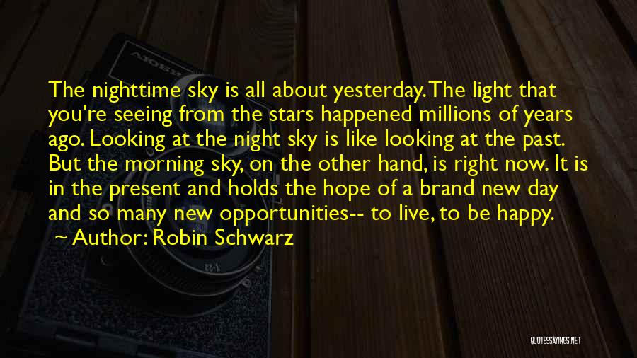 A Light Of Hope Quotes By Robin Schwarz