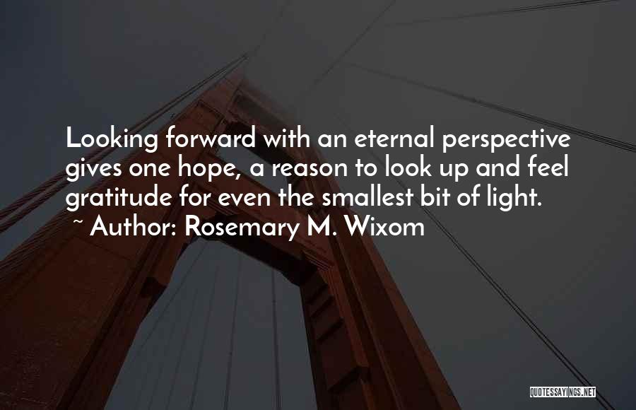 A Light Of Hope Quotes By Rosemary M. Wixom