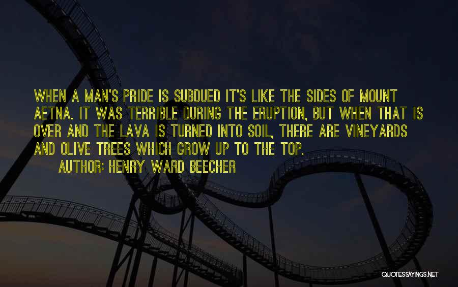 A Man's Pride Quotes By Henry Ward Beecher