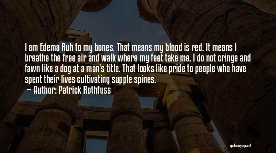 A Man's Pride Quotes By Patrick Rothfuss
