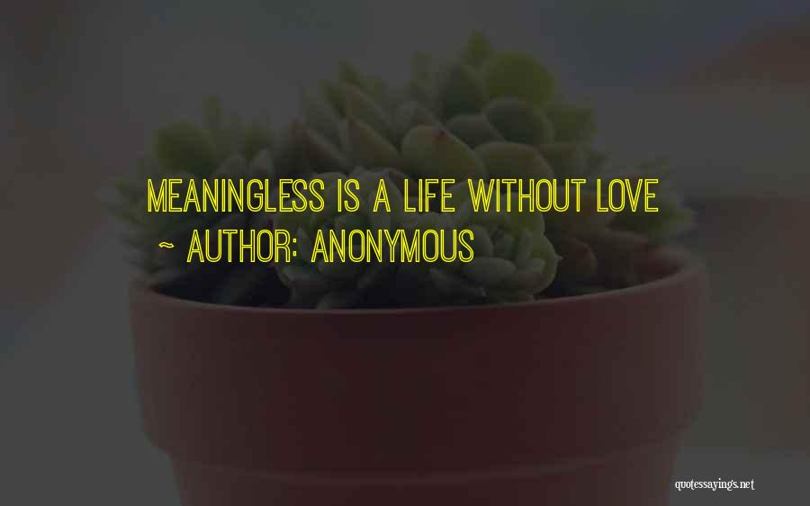 A Meaningless Life Quotes By Anonymous