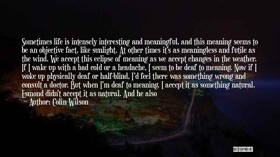 A Meaningless Life Quotes By Colin Wilson