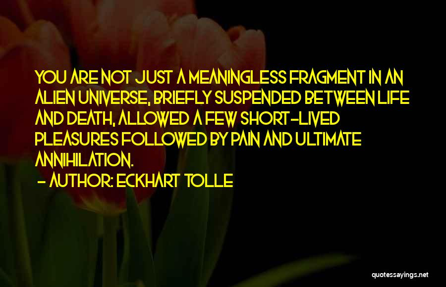 A Meaningless Life Quotes By Eckhart Tolle