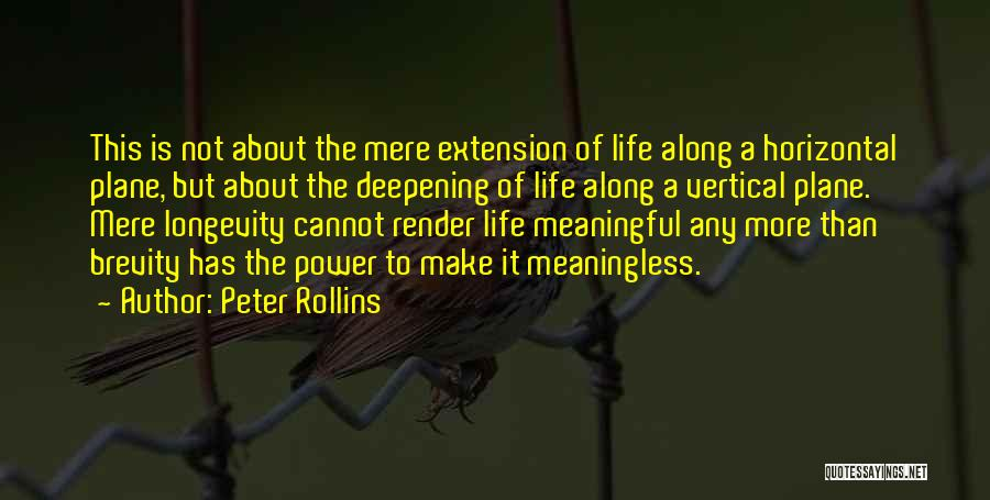 A Meaningless Life Quotes By Peter Rollins