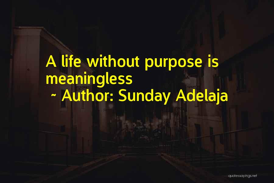 A Meaningless Life Quotes By Sunday Adelaja