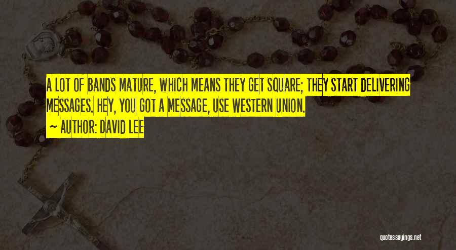 A Message Quotes By David Lee