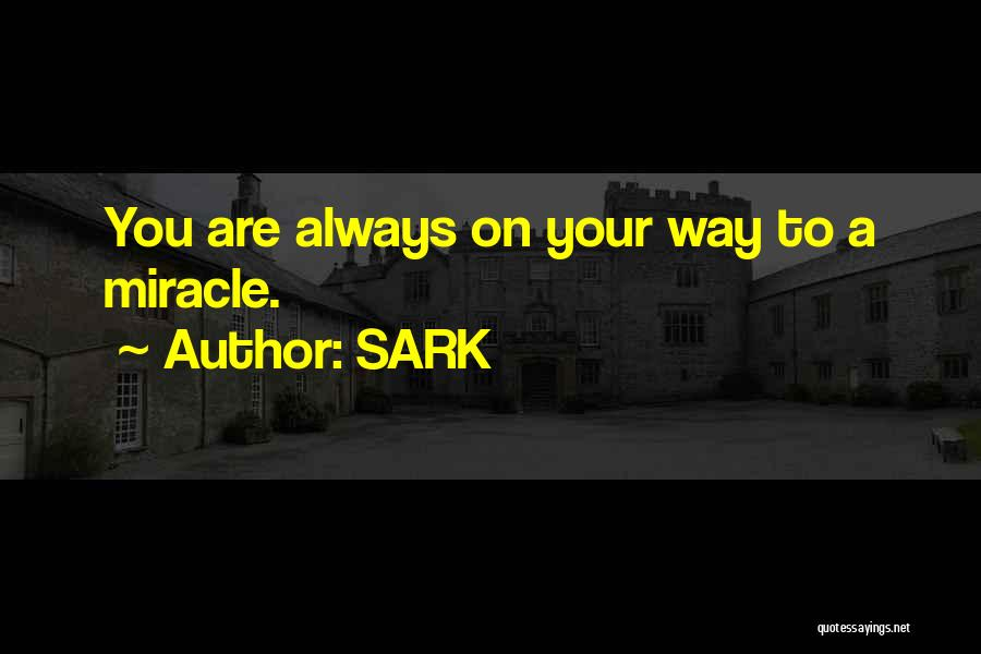 A Miracle Quotes By SARK