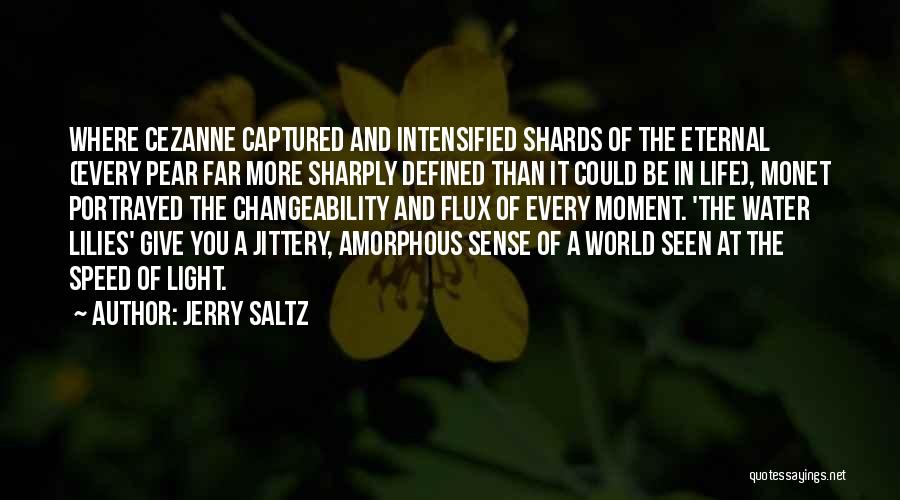 A Moment Captured Quotes By Jerry Saltz