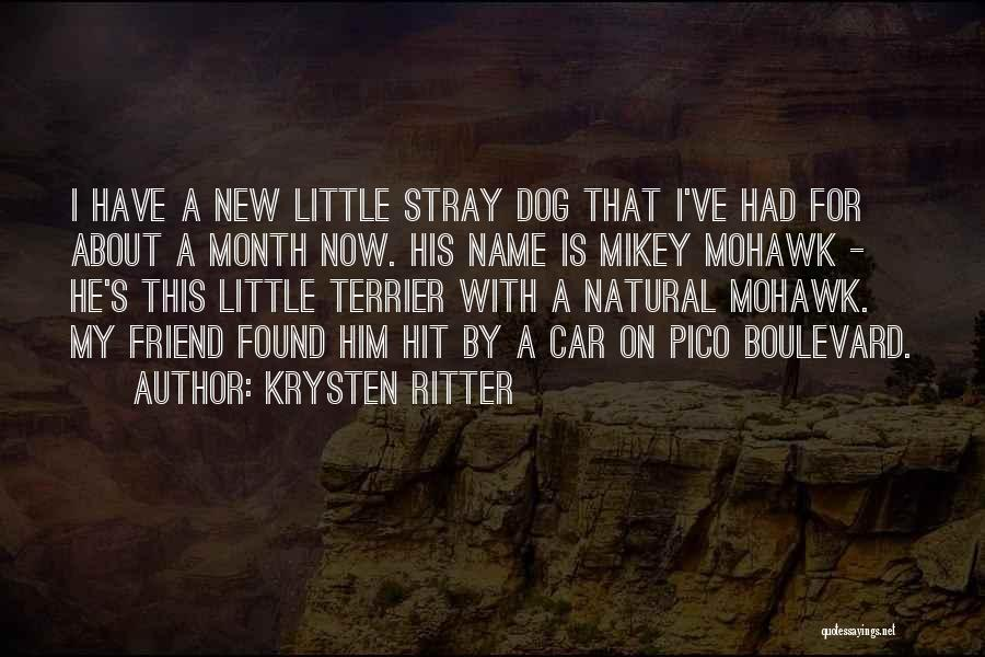 A New Found Friend Quotes By Krysten Ritter