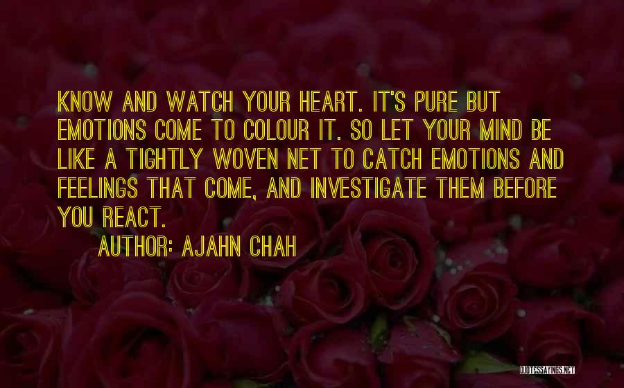 A Pure Heart Quotes By Ajahn Chah