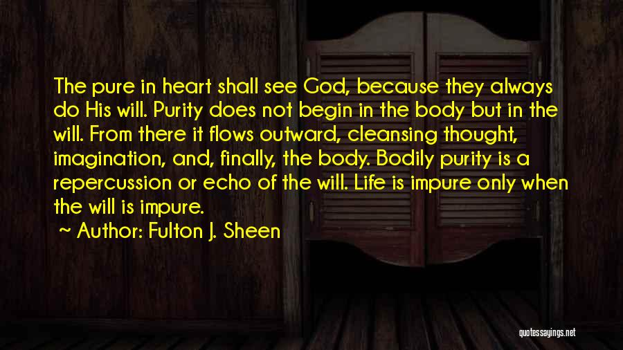 A Pure Heart Quotes By Fulton J. Sheen