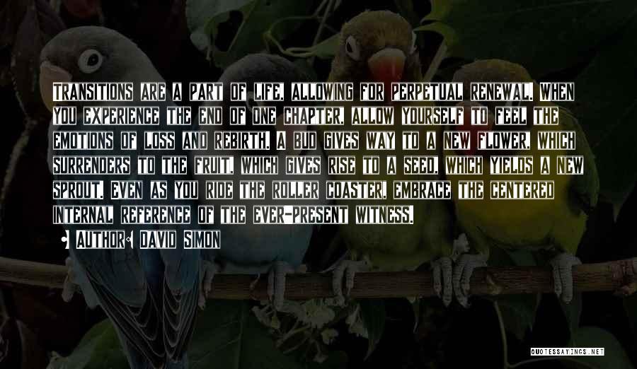 A Roller Coaster Life Quotes By David Simon