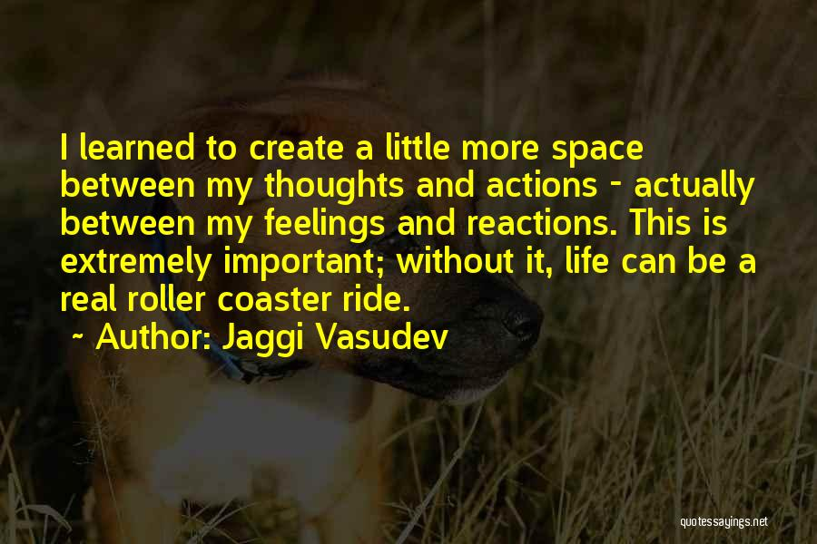 A Roller Coaster Life Quotes By Jaggi Vasudev