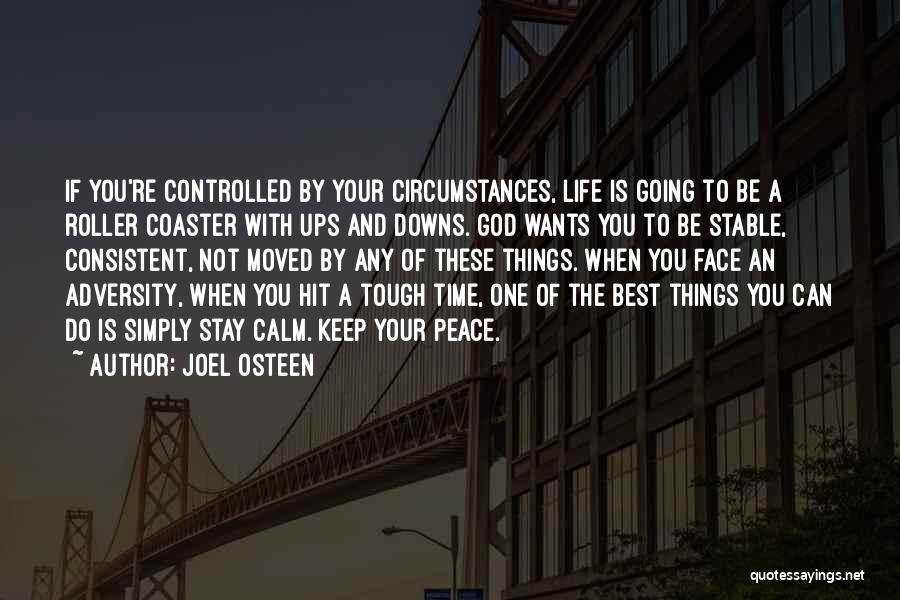 A Roller Coaster Life Quotes By Joel Osteen