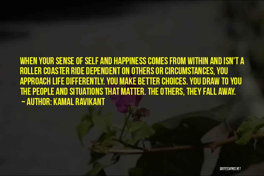 A Roller Coaster Life Quotes By Kamal Ravikant